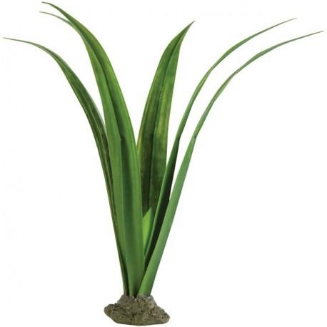 Pandanus - Gecko Plant (Exo Terra)