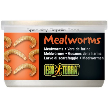 Mealworms - 1.2 oz Can (Exo Terra)