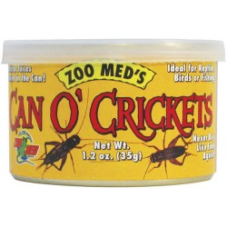 Can O' Crickets - Large - 1.2 oz (Zoo Med)