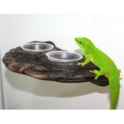 Gecko Ledge - Earth (Pet-Tech)