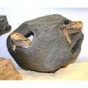 Hideaway - LG - Granite (Pet-Tech)