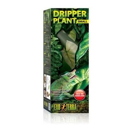 Dripper Plant - SM (Exo Terra)