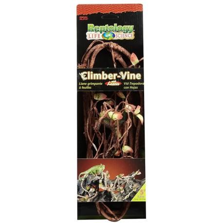 Climber Vine w/ Leaves (Penn-Plax)