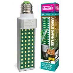 Jungle Dawn LED - 11w (Arcadia)
