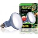 Daylight Basking Spot - 150w (Exo Terra)