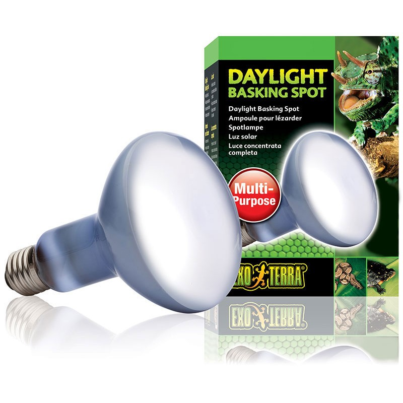 Exo Terra Daylight Basking Spot Lamp 150w