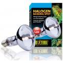 Halogen Basking Spot - 50w (Exo Terra)