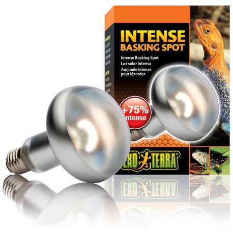 Intense Basking Spot - 150w (Exo Terra)