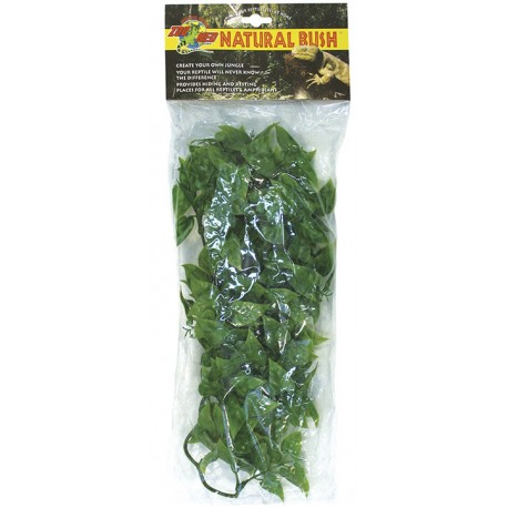 Mexican Phyllo - MD (Zoo Med)