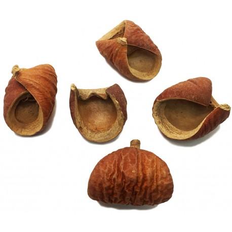 Nut Pods (RSC)