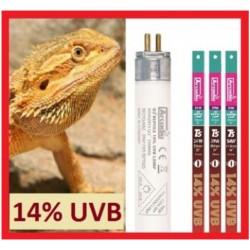 """14% UVB T5 Bulb - 22"""" (Arcadia)"""