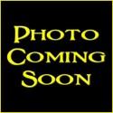 Reticulated Pythons - Purple Albino (Babies)