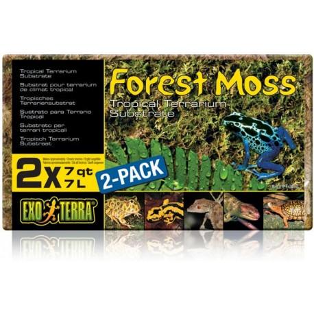 Forest Moss - 2 Pack (Exo Terra)