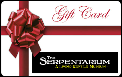 The Serpentarium - Reptile Gift Certificates!