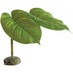 Scindapsus - Tree Frog Plant (Exo Terra)