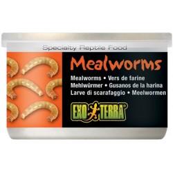 Mealworms - 1.2 oz Can (Exo Terra)