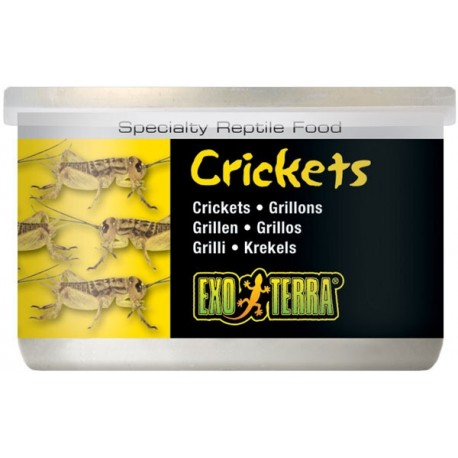 Crickets - 1.2 oz Can (Exo Terra)