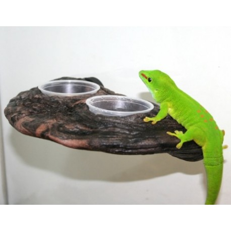 Gecko Ledge - Earth (Pet-Tech)