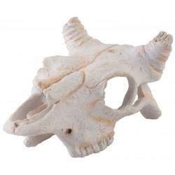 Skull - Buffalo - Small (Exo Terra)