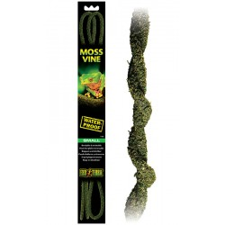 Moss Vine - SM (Exo Terra)