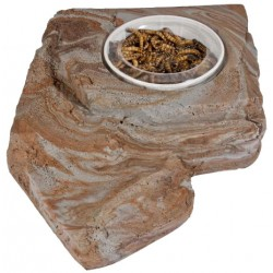 Worm Feeder Rock - LG (Pet-Tekk)