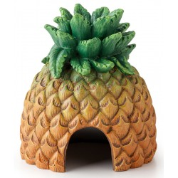 Pineapple Hut (Exo Terra)
