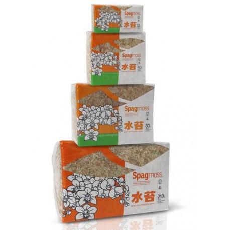 Spagmoss - 500g (Besgrow)