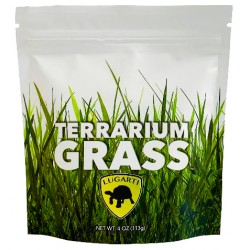 Terrarium Grass - 4 oz (Lugarti)