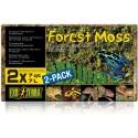 Forest Moss (Exo Terra)